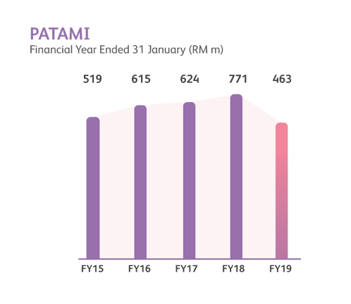 PATAMI financial year performance chart