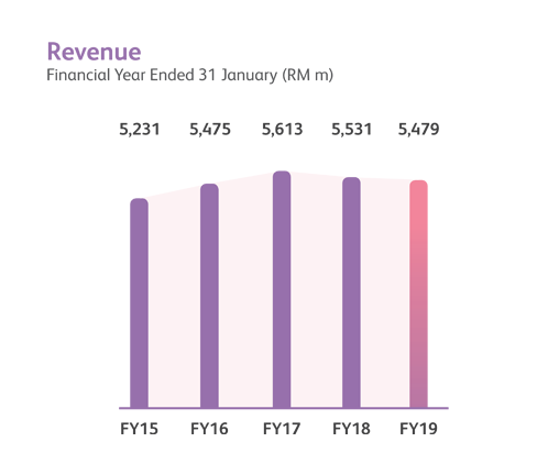 Revenue financial year performance chart